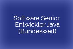 Software Senior-Entwickler Java SE/EE – Bundesweit (m/W)